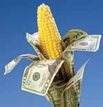agriculture economy
