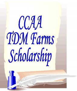 CCAA TDM Scholarship